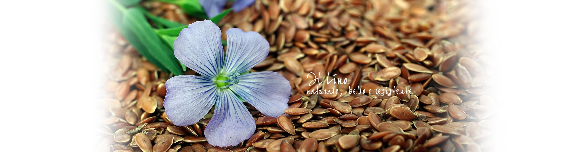 Telene | Nencioni | Il Lino Bello Naturale e Resistente