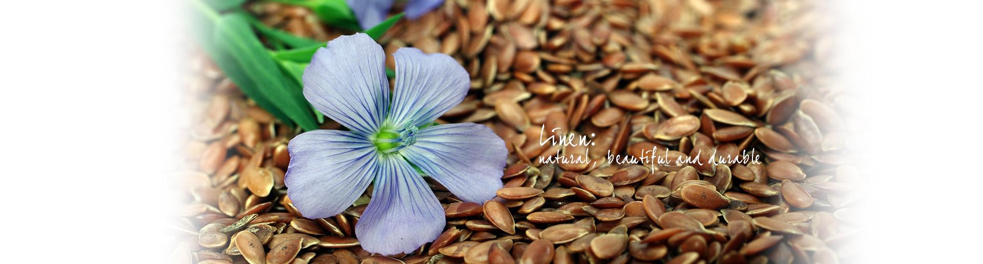Slide Telene Nencioni   Natural Beautiful and Durable