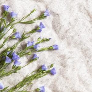 Tessuti di lino per la casa